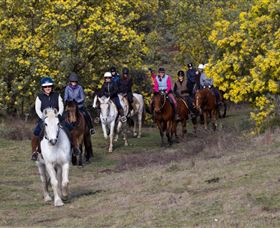 Burnelee Excursions on Horseback - Accommodation Port Macquarie