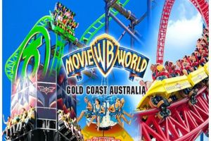 Gold Coast Theme Parks - Accommodation Port Macquarie