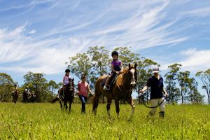 Port Macquarie Horse Riding Centre - Accommodation Port Macquarie